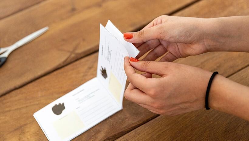Dino-Kindergeburtstag-Forscherbuch-Innenteil-Umschlag-kleben