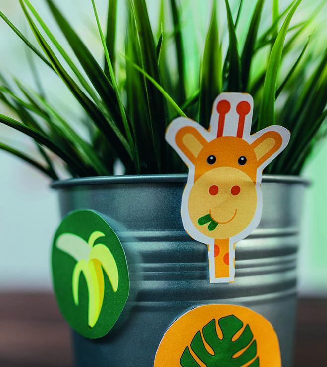 Dschungel-Kindergeburtstag-Dekopicker-Dschungelgeburtstag-shop03