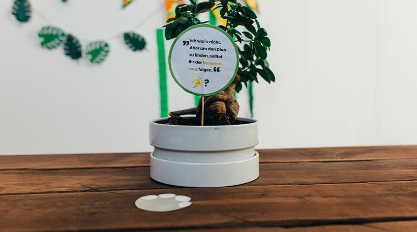 Dschungel-Kindergeburtstag-Schatzsuche_Kinder_Tiergeraeusche_Elefant2