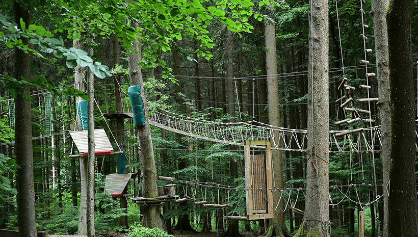 Kindergeburtstag-Kletterwald-Tipps
